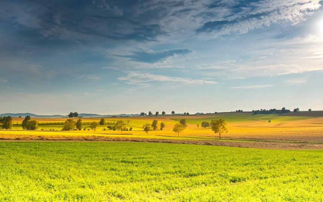 🥇 5 empresas proveedoras de internet en zonas rurales 2020 [Galicia]